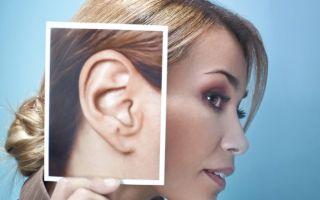 Где находятся лимфоузлы за ушами: расположение