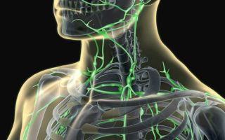 Непосредственное расположение лимфоузлов на шее